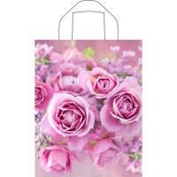 Пакет с петлевой ручкой 28x35 см цветы/мини-джип/розовая сова (1 шт.)